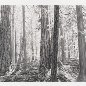 Michael Kareken Prints at Highpoint Center for Printmaking